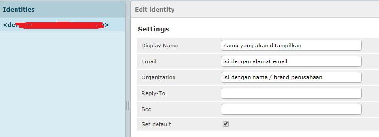 isi identitas email